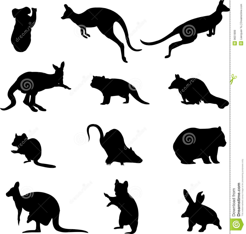 Australian Marsupial Animals Royalty Free Stock Images.