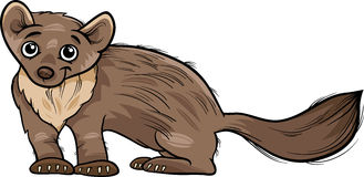 Marten Stock Illustrations.