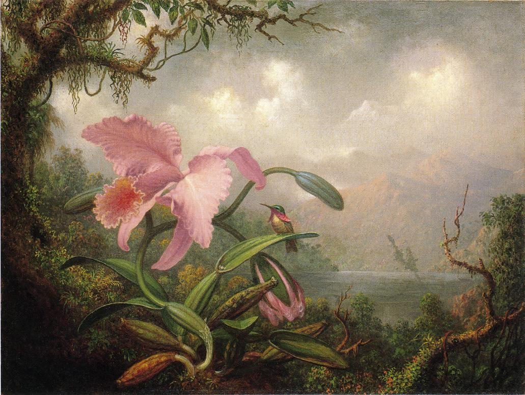 peira: Martin Johnson Heade: White Brazilian Orchid (1875.