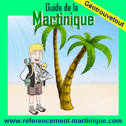 Climate of Martinique, seasons, when going on holiday ?.