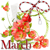1 MARCH.