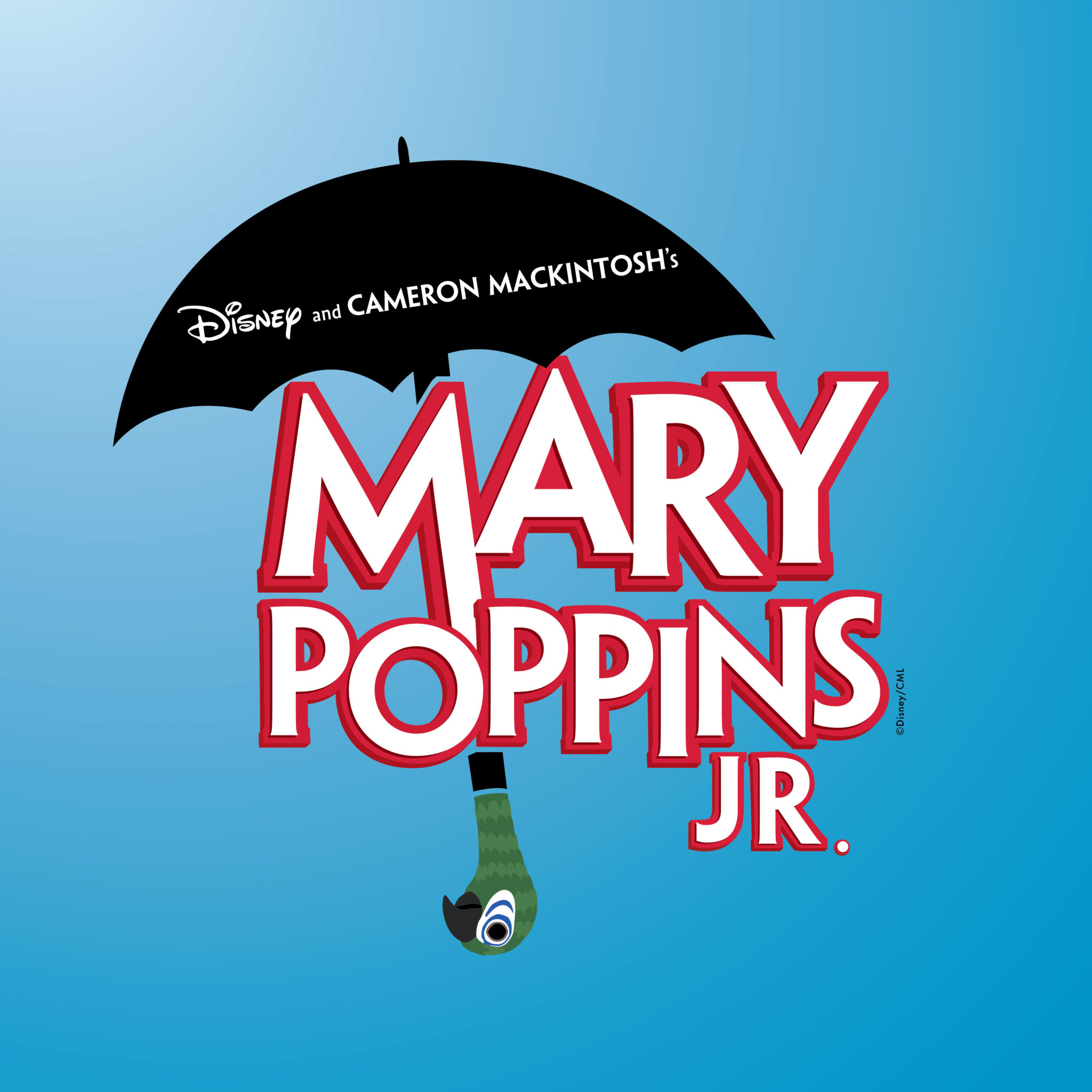 Your Teen Could Star in Mary Poppins Jr..