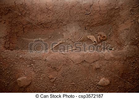 Picture of Skeleton In Mass Grave, Museum in Ayacucho, Peru.