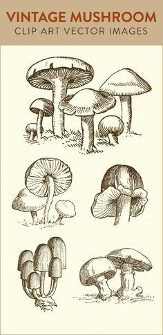 Magical Mushrooms Art Print.