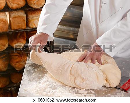 Stock Photo of Master baker kneading dough, close.