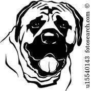 Mastiff Clipart Royalty Free. 320 mastiff clip art vector EPS.