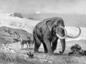 Mastodon Clip Art Download.