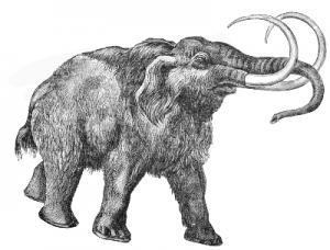 Mastodon Painting Clip Art Download.