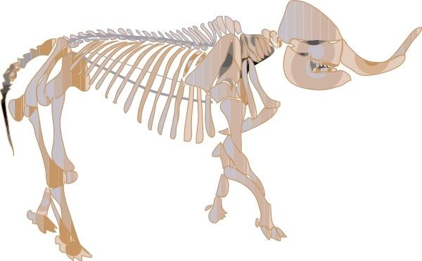 Mastodon Fossil clip art Free vector in Open office drawing svg.