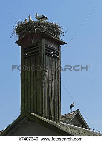 Stock Photography of Storks nest in Masuria in Poland k7407340.