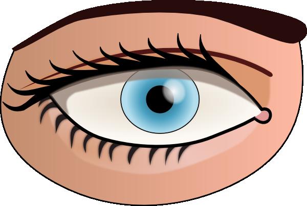 Eye Clip Art at Clker.com.