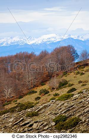 Stock de imagenes de pirineos, matagalls, montseny, Montaña, vista.
