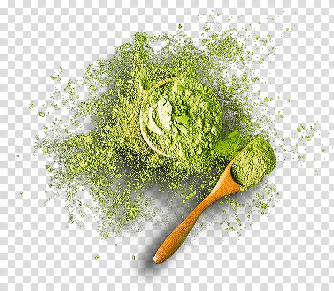 Matcha Green tea ice cream, green tea transparent background.