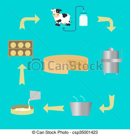 Vector Illustration of Process for manufacturing cheese.