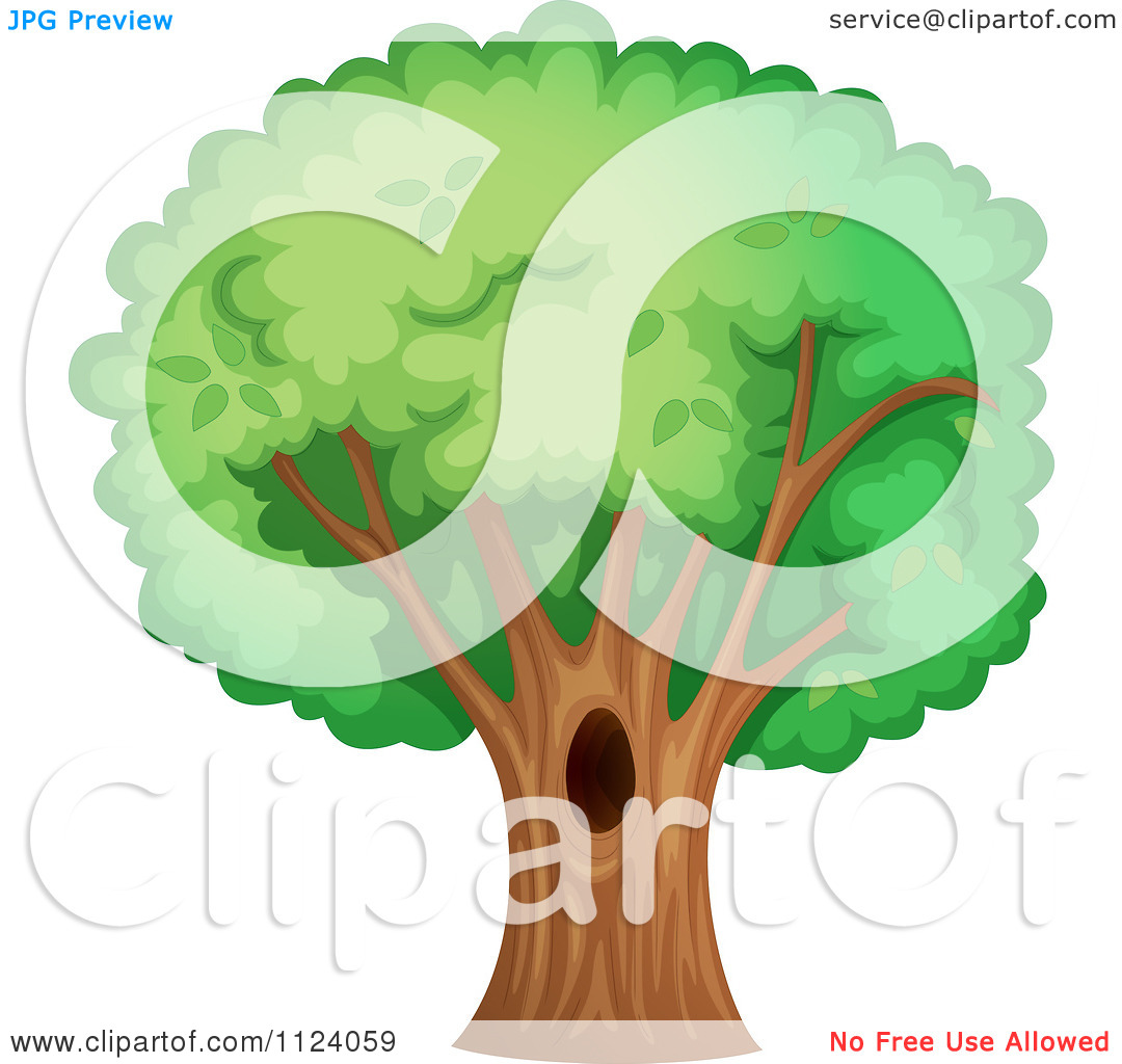 Clipart Of A Mature Tree With A Hole.
