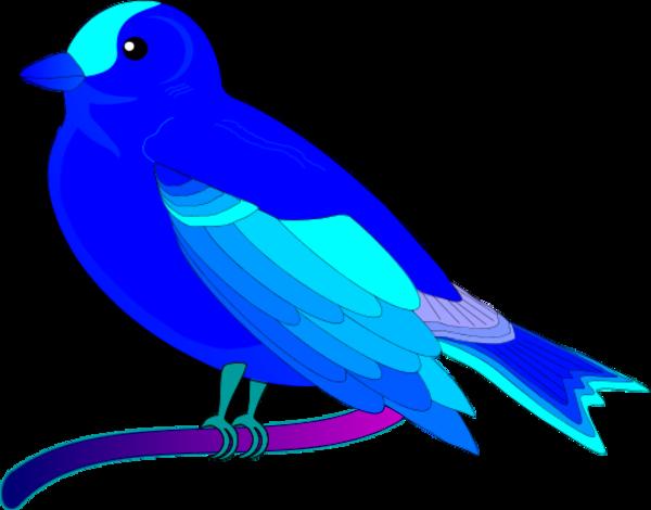 bird of peace mauro oliv 01.