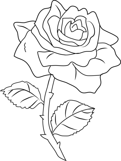 Pretty Rose Coloring Page.