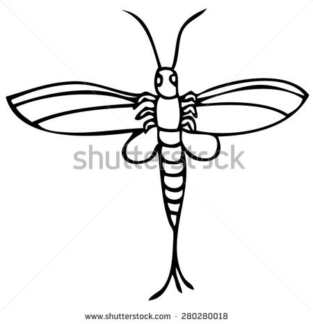 Mayfly Stock Vectors, Images & Vector Art.