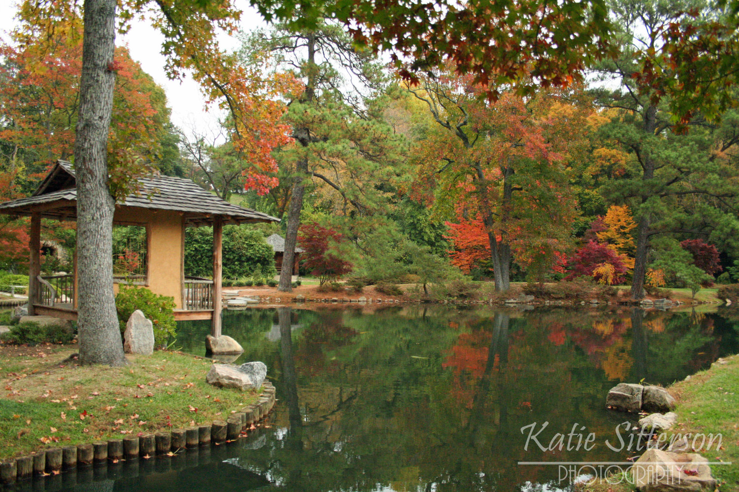 SALE Fall Foliage Virginia Landscape at Maymont by ImageAppeal.