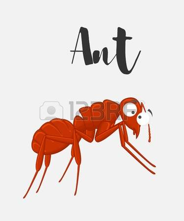 173 Species Ants Stock Vector Illustration And Royalty Free.