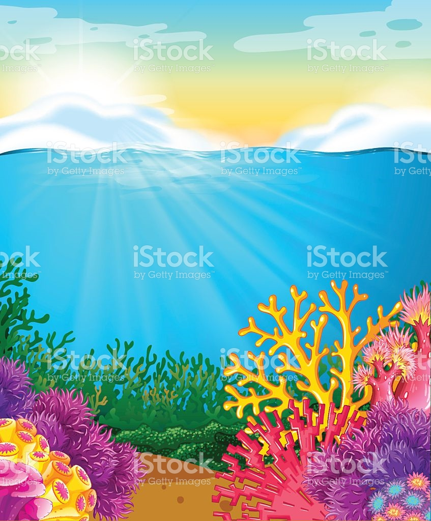 Coral Reef Under The Sea stock vector art 537818354.