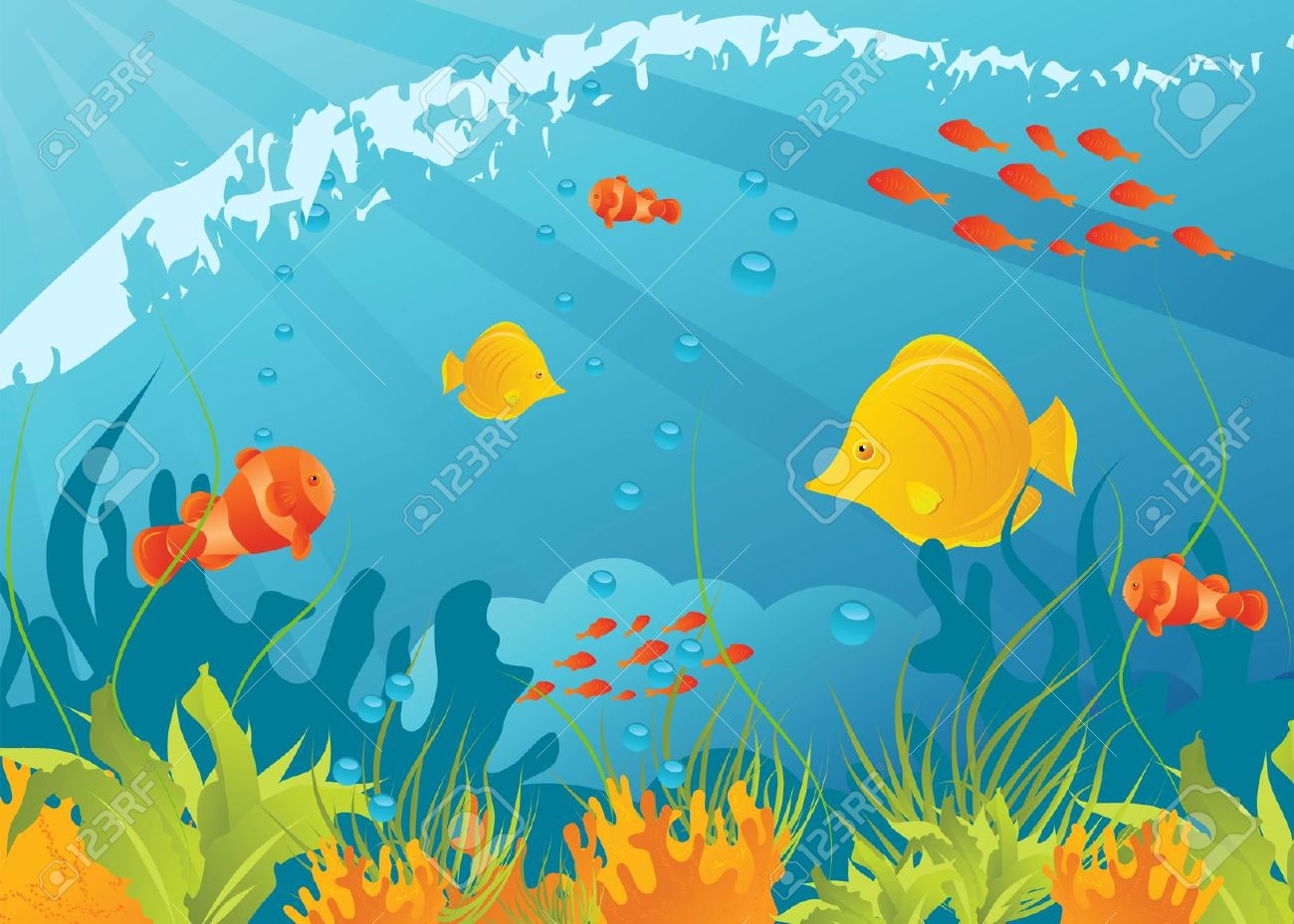 Underwater Background With Different Fishes, Algae And Corals.