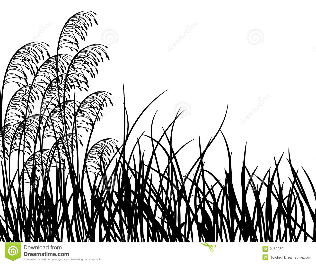 Meadow Grass Clipart.