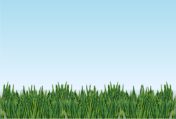 Meadow Clipart.
