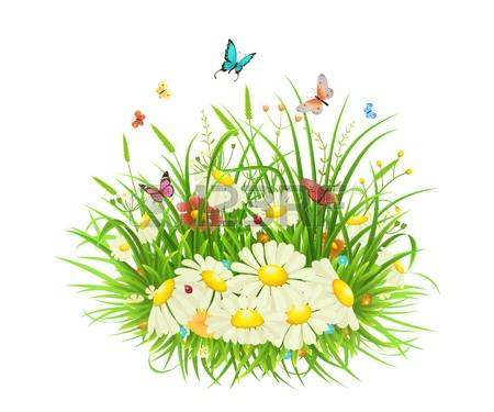 10,078 Meadow Herbs Cliparts, Stock Vector And Royalty Free Meadow.