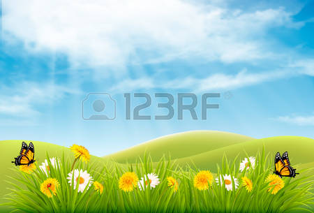 87,896 Meadow Stock Vector Illustration And Royalty Free Meadow.