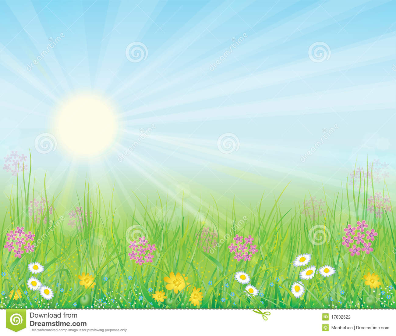 Background With Sunny Meadow Stock Photography.