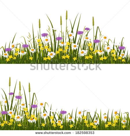 Wild Flower Field Stock Vectors & Vector Clip Art.