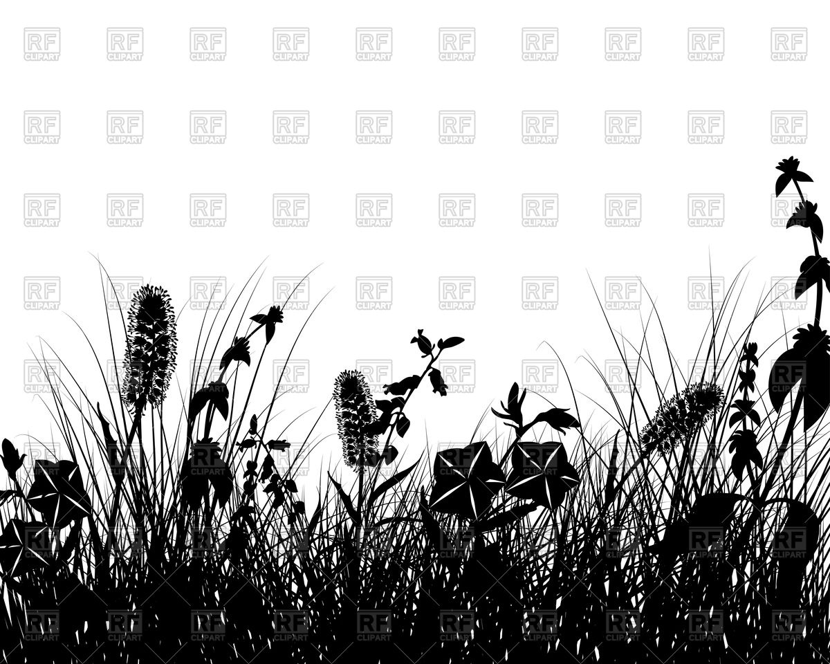 Wild flowers on meadow silhouette Vector Image #89815.