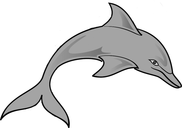 Spinner Dolphin Cliparts.