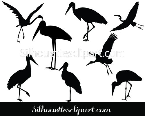 1000+ images about BIRDS VECTOR GRAPHICS on Pinterest.