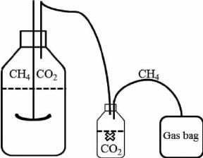 Schematic diagram of gas.