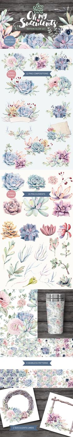 Pin by Succulent Diva Designs on My Succulent Designs.