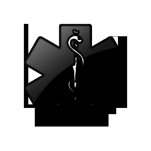 Medical Alert Logo.