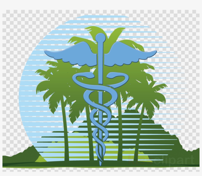 Logo Timely Medical Clinic Clipart Clinic Health Care.