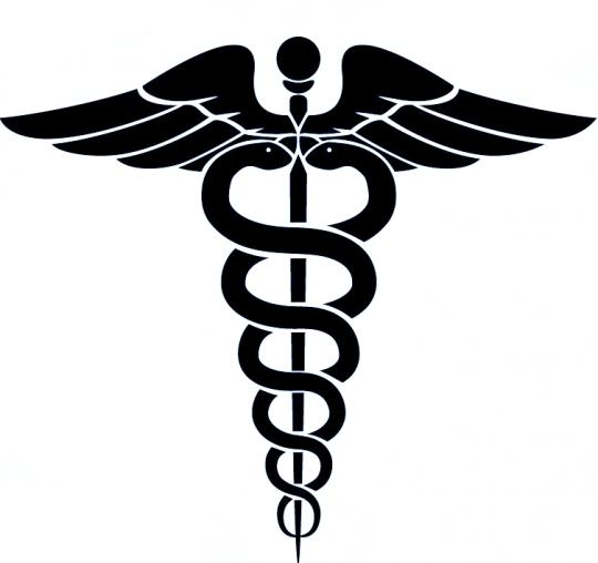 medical+wings.