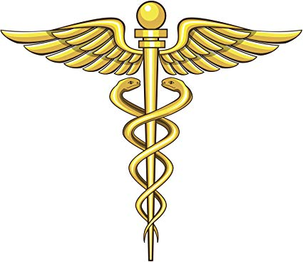 Amazon.com: Caduceus Medical Staff Symbol Logo with Snakes.