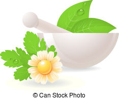 Herbs Illustrations and Clip Art. 37,168 Herbs royalty free.