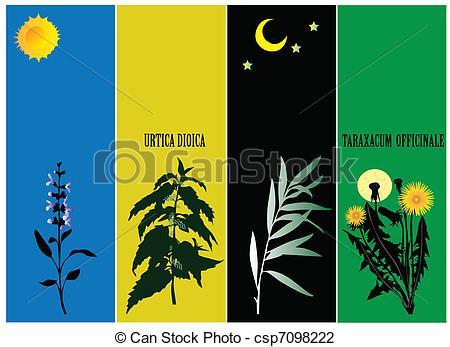 Medicinal plants Stock Illustration Images. 3,402 Medicinal plants.