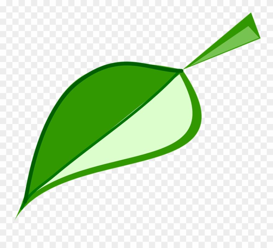 Leaf Green Environment.
