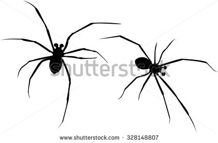 Mediterranean Black Widow Stock Photos, Royalty.