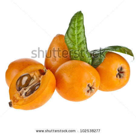 Loquat Medlar Fruit Isolated On White Stock Photo 102960356.