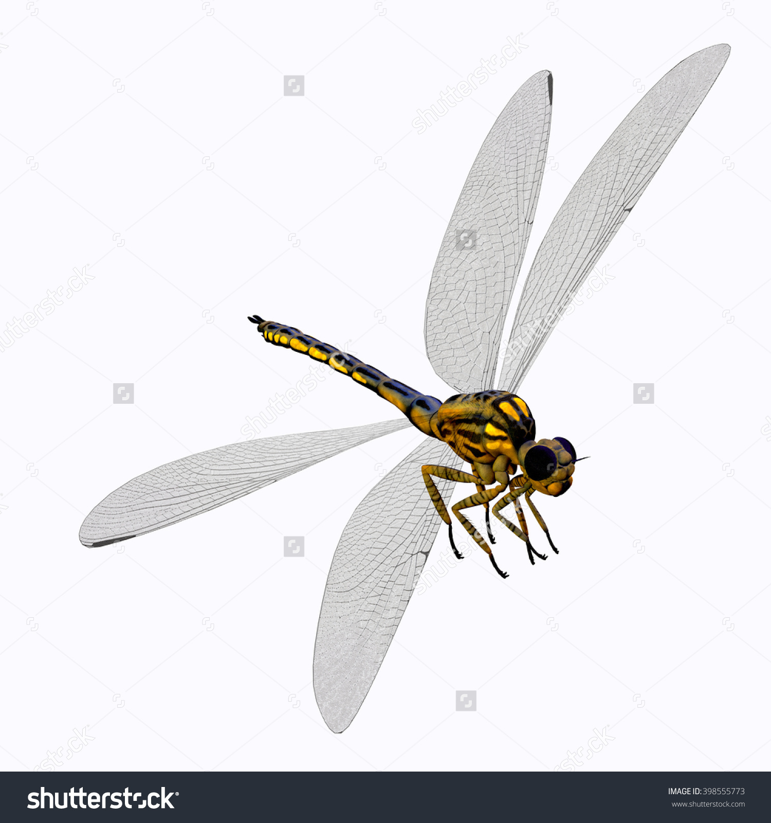 Meganeura Dragonfly Body 3d Illustration.