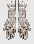 Pictures of Henna Tattoo on Hands k1316468.