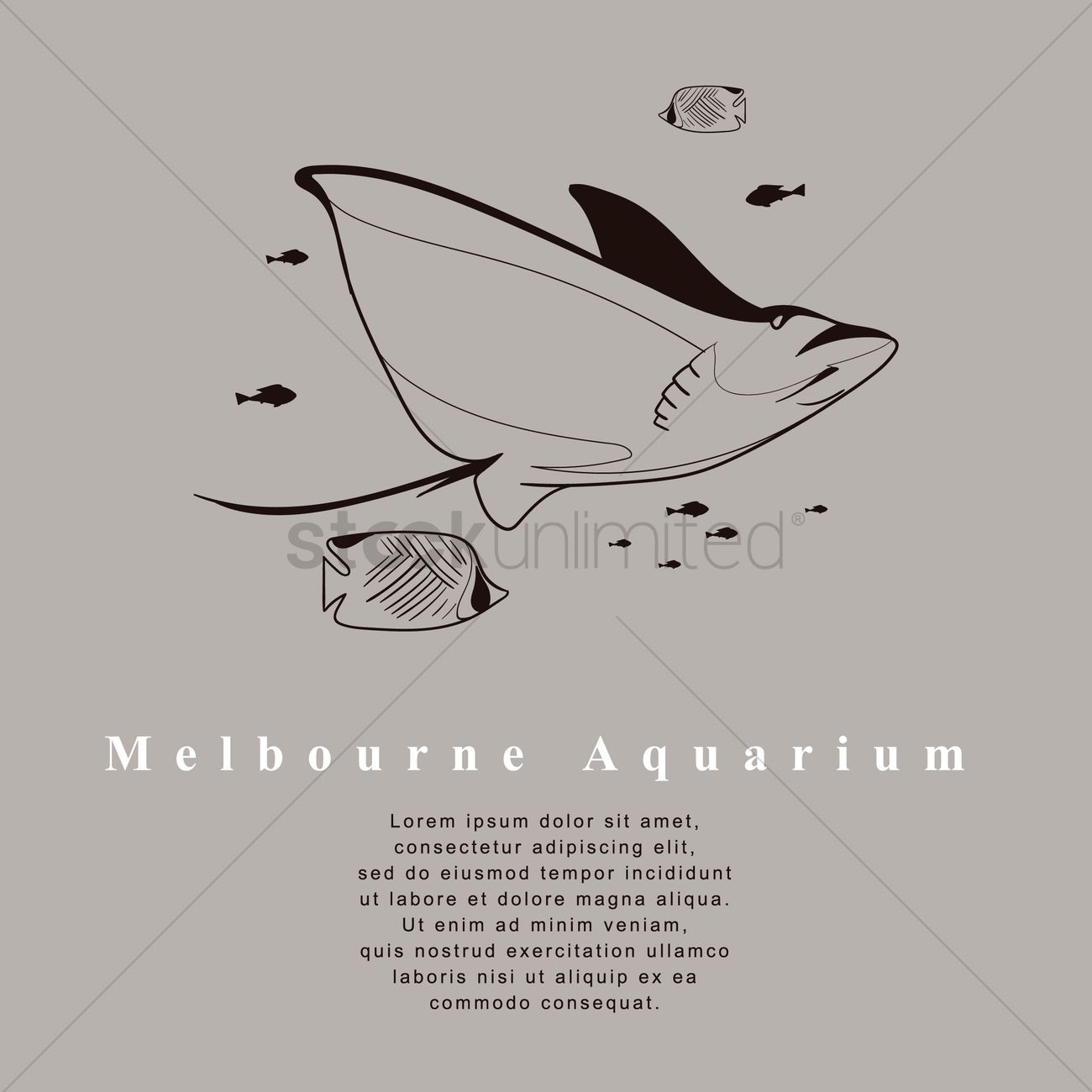 Melbourne aquarium underwater fish design Vector Image.