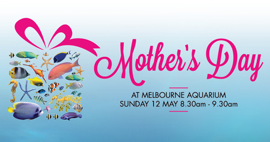 Mother's Day at Melbourne Aquarium.